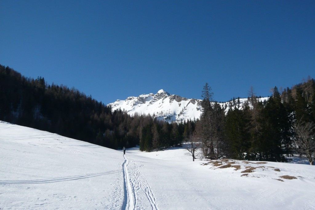 Prvá polovica túry je trochu nezáživné šliapanie po lesnej ceste. V počasí, aké bolo v nedeľu, aj to bola radosť. Kopec vzadu je Fadenkamp (1804 m),, cestou nazad sa dá urobiť odbočka na jeho prudko lyžovateľné svahy.