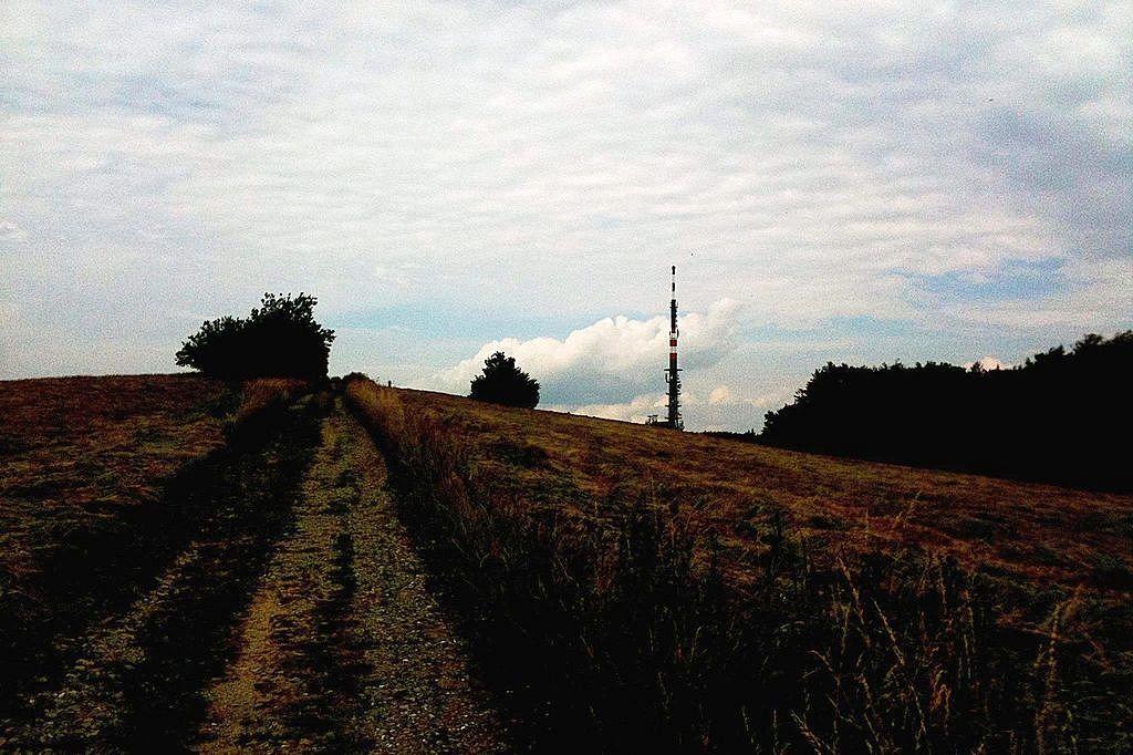 Tesne pred vrcholom Veľkej Javoriny