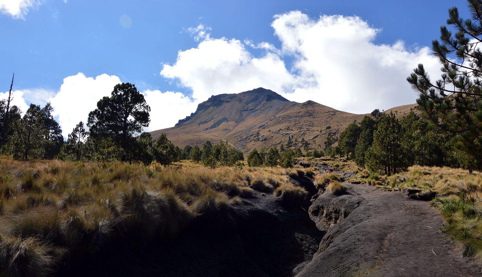 Pred sebou vidíme La Malinche 4462 m, ideme naň z Il Malintzi 3083 m. Je to naša prvá aklimatizácia.