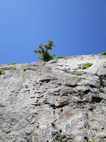 Obhliadka Hodinkovej veže