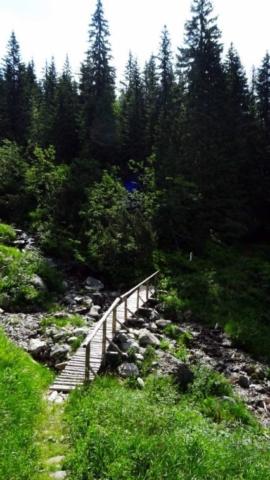 Lávka cez potok v Tichej doline