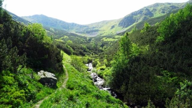 Chodník bol vedený povedľa Tichého potoka