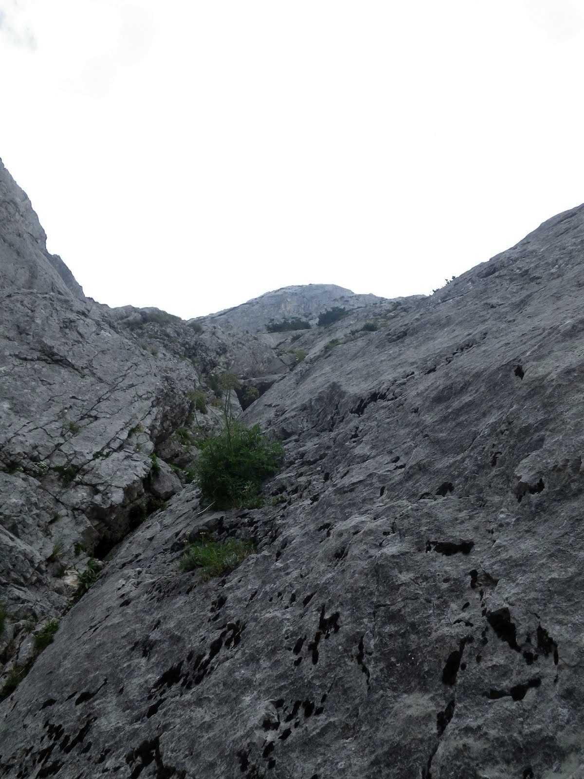 Celkový pohľad na stenu od začiatku cesty Seeblick