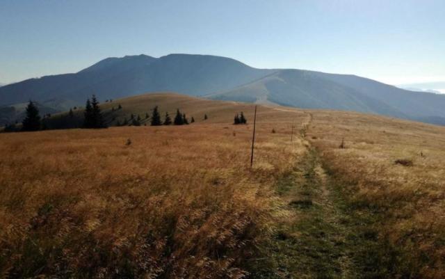 Cesta na Kozí chrbát