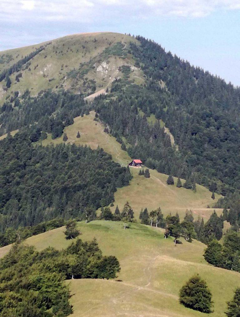 Borišov