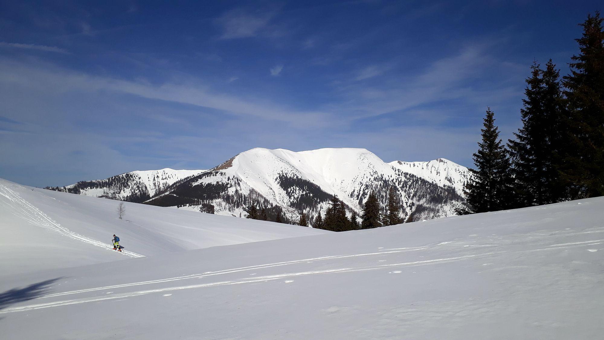 05 Wildalpe výhľad na Goller