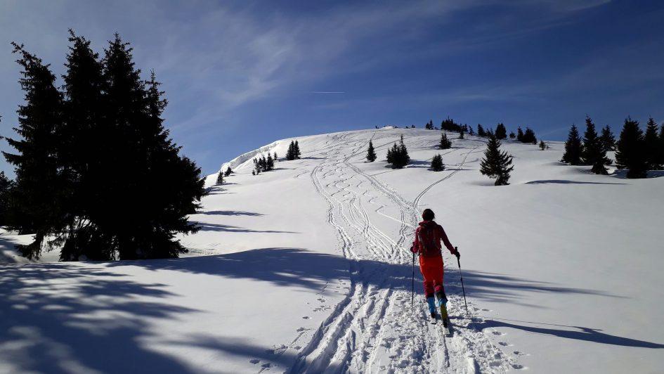 06 Wildalpe vrcholové plató Hochalm