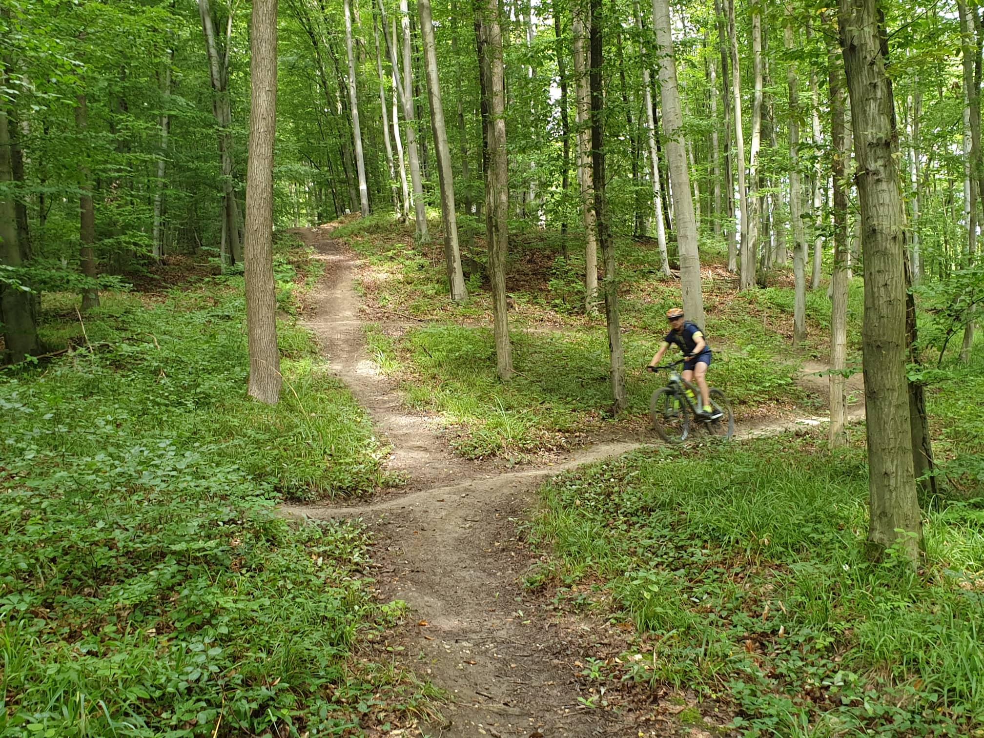 09 Flow trail Weidlingbach