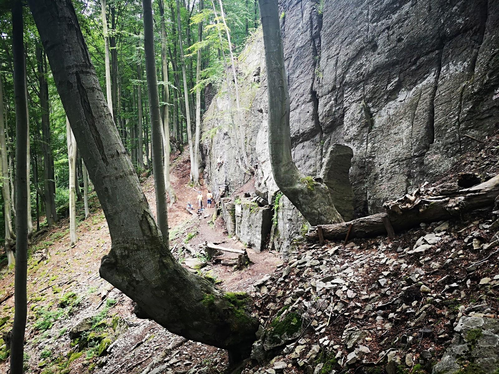 Sekaniny 8 Volkova skala