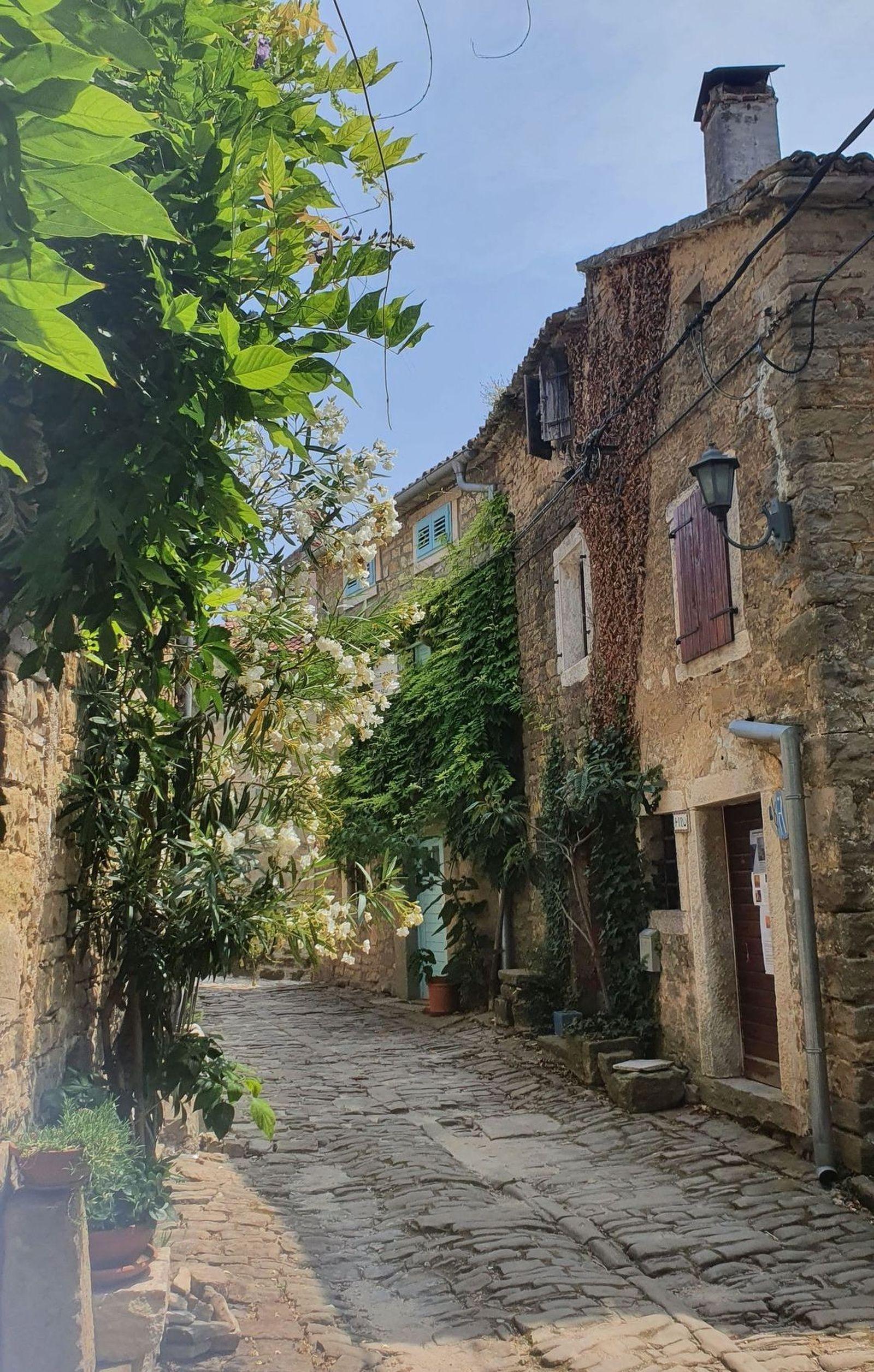 16 Cyklotrasa Parenzana Istria